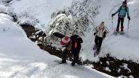 schneeschuhwandern_hlw_bad_aussee_4
